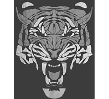 Raja Tiger Photographic Print