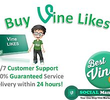 Buy Real Vine Likes at the Market Price by Socialmandate
