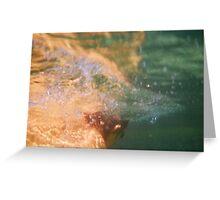 Ocean Pool # 3 Greeting Card