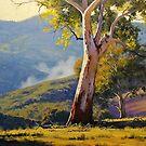 Sleeping Koala Turon by Graham Gercken