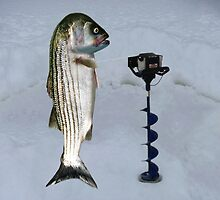 JUST AN AUGER ICE FISHING DAY..STRIPED BASS USING ICE AUGER..PICTURE-PILLOW-TOTE BAG ECT... by ✿✿ Bonita ✿✿ ђєℓℓσ
