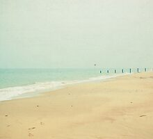 Sea Mist by Cassia
