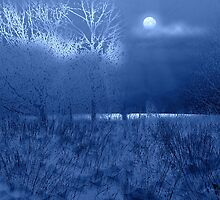 Moonlit lake - winter by Ann Nightingale