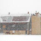 Winter Farm Scene by Daniel  Parent