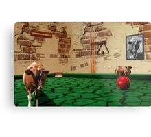 Cows rules! Metal Print