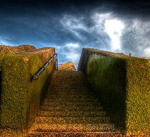 Steps to the Fort by Lee  Dighton