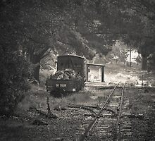 End of the Line  by Christine  Wilson Photography