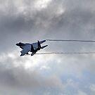 Oregon Air National Guard F-15 by Bob Hortman