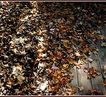 Feel the Rustle of Leaves, Dead Leaves on a Deck by Wayne King
