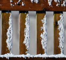 light snow on fence by cetrone