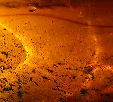 Solar Pond by AsEyeSee
