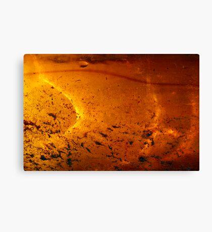 Solar Pond Canvas Print