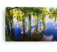 """Eskom Pond- South Africa' Canvas Print"