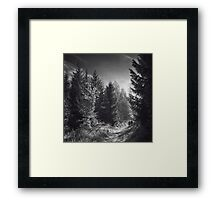 We'll walk this path together Framed Print