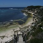 Stair Master - Rottnest Island, Western Australia. by Heather Linfoot