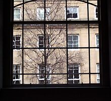 Windows Looking into Windows by biddumy