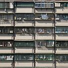 close neighbours - Kaohsiung by Ryan Bird
