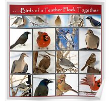 Birds of a Feather. . . . Poster