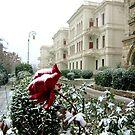 Snow has returned again... by kindangel