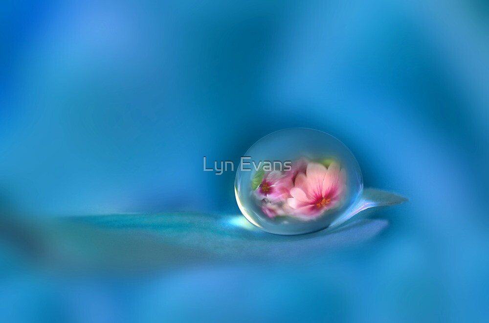 Feeling blue by Lyn Evans