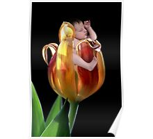 Tulip baby Poster