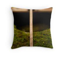 Water Basin, Kyoto Temple Throw Pillow