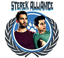 The Ultimate Sterek Alliance T-Shirt [Back] Photographic Print
