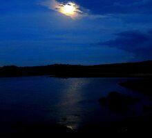 Moonlit Lake by Salien