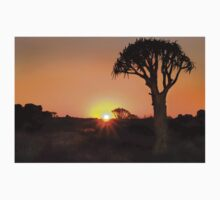 Quiver Tree Dawning - Namibia Africa T-Shirt