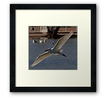 Successful Fisherman Framed Print