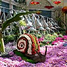 Bellagio Conservatory & Botanical Garden # 2330 by RichardKlos
