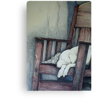 Sleeping Dog in Panama Canvas Print