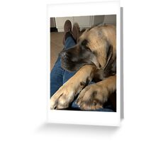 Sophie's the Boss! Greeting Card