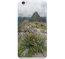 Machu Pichu iPhone Case/Skin