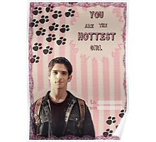 My Teenwolfed Valentine [You are the hottest girl] Poster