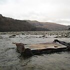 Debris, Ullswater by Catherine Young