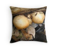 Late Winter Oyster Fungus Throw Pillow