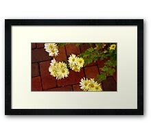 Flowers and Brick Framed Print