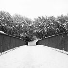 Snow Bridge by Stephen Robinson