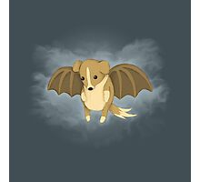 Vampire Puppy Bat Photographic Print