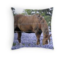 Grazing in the Bluebonnet Field Throw Pillow