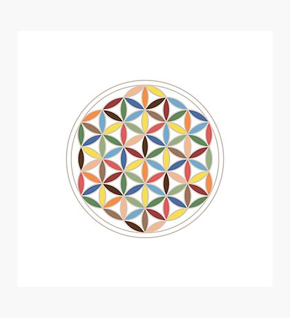 Flower of Life Retro Colors Photographic Print