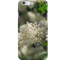 Deer Brush iPhone Case/Skin