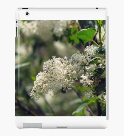 Deer Brush iPad Case/Skin