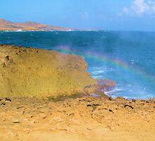 Rainbows in the Mist by Carrie Bonham