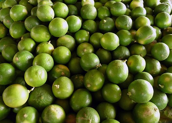 Limes and more limes by Lucinda Walter