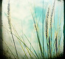 grass series #3 by Jackie Cooper