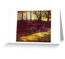 in the woods. Greeting Card