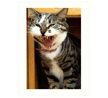 Cat Yawning Art Print