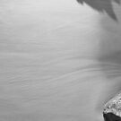 Wet Sand by Nenad  Njegovan